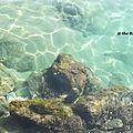 Creta - part 3