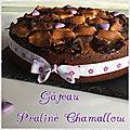 Gâteau au praliné et aux chamalows