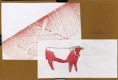 vache-rouge