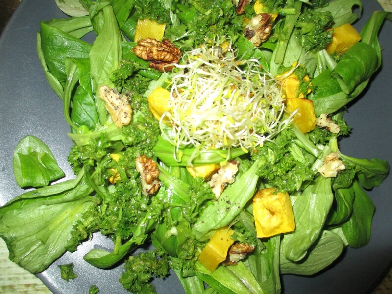 salade-chaud-froid-courge-noix