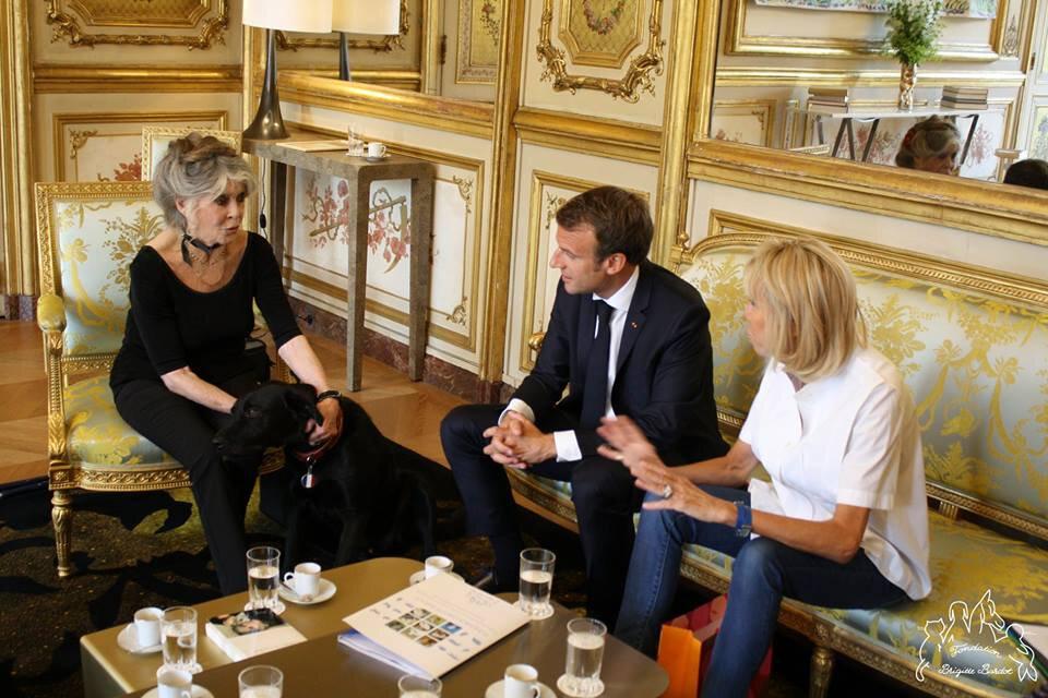Edito Bardot - Macron