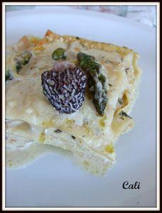 Lasagnes Printanières 005