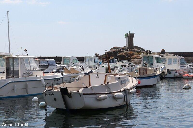 00365 Guidel - Le Phare et le Port de la Pointe de Trévignon
