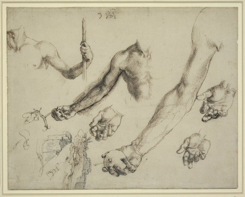 3-LINESOFTHOUGHT-Durer