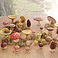 Les champignons saison 2