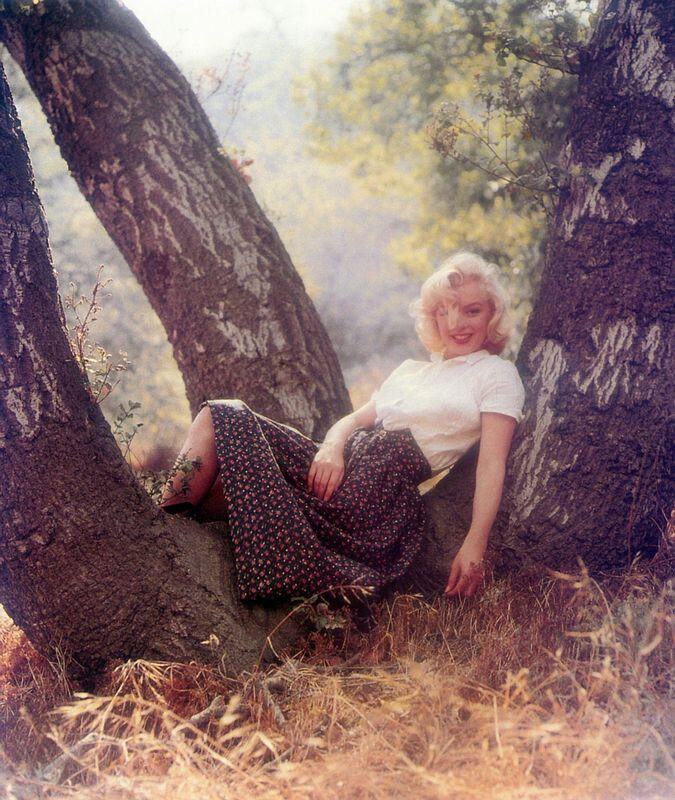 1953-09-02-LA-Laurel_Canyon-Tree_Sitting-041-1b