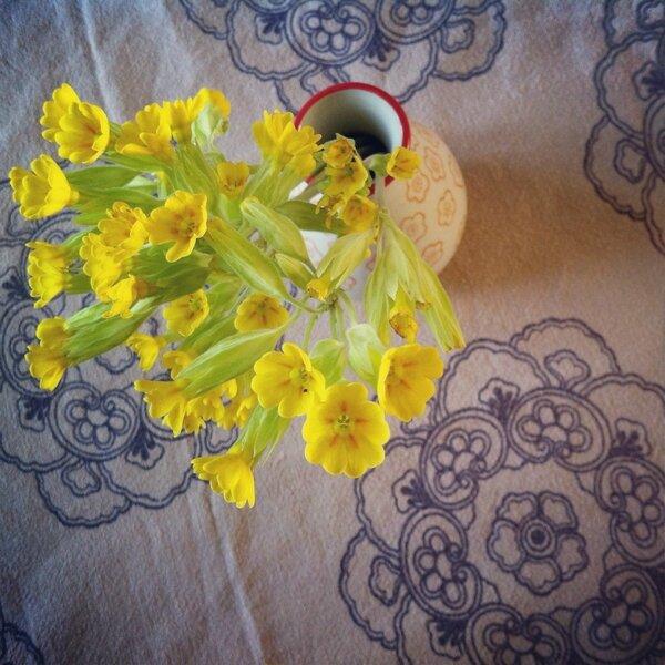 fleurs avril 1