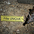 Fille unique...