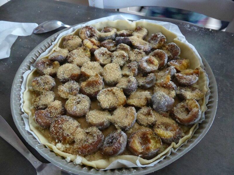 10-prunes, tarte (1)