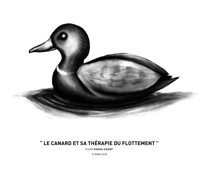 __le_canard_et_sa_the_rapie_du_flottement__
