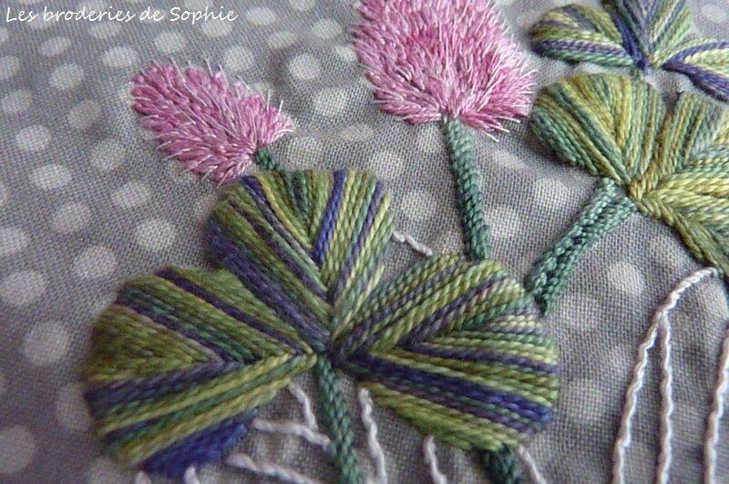 fleurs de trèfle (5)