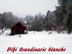 scandinavie_blanche