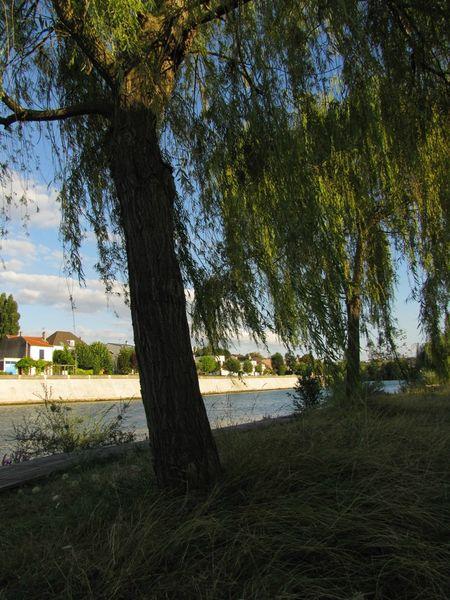 Marne8
