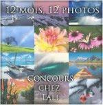 banniere12mois12photos2