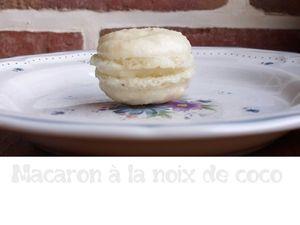 Macaron à la noix de coco