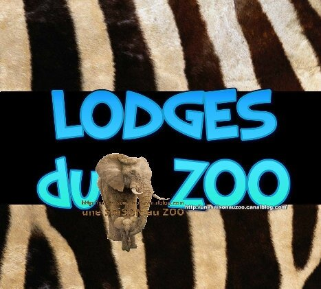 LODGES du ZOO