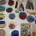 Menaces sur la biodiversité