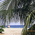 ¤ PUERTO ANGEL ( Mexique -Côte Pacific )