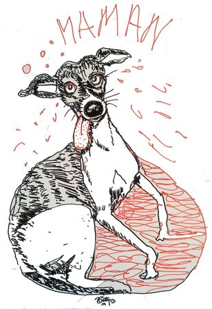 chien whippet caricature tableau velleda