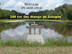 P1050701 [50%] Theillay 2012