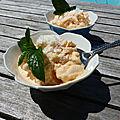 Yaourt glacé au melon et à la noix de coco (frozen yogurt)