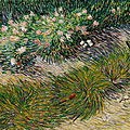Christie's to offer vincent van gogh's coin de jardin avec papillons