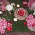 table picnic 063