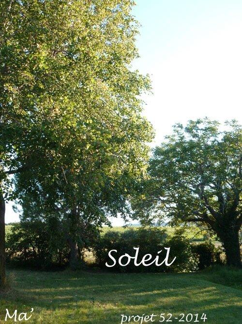 52-2014_S35_soleil