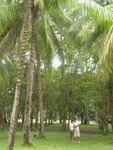 Thailande_2_066