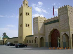 Marzouga_081