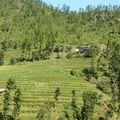 2009-10-09 route Teraï - Katmandou (40)
