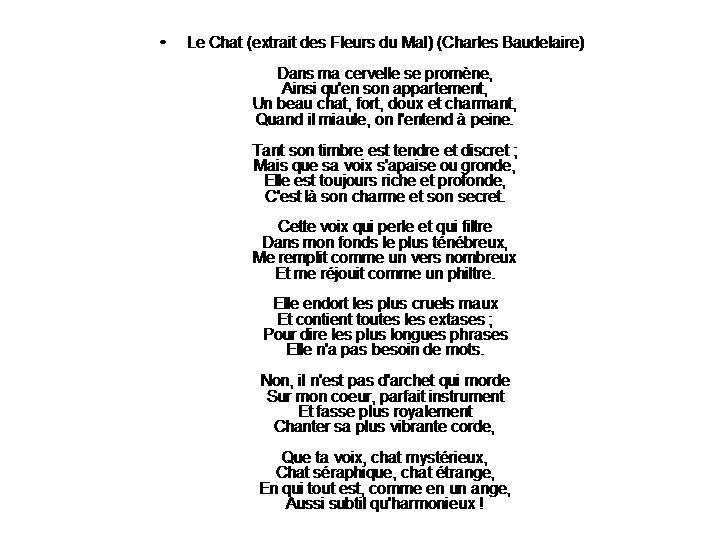 RONDE DES CHATS (120)
