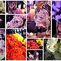 La vie, c'est comme une fleur qui perd ses pétales.