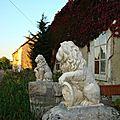les lions de le rue du couvent
