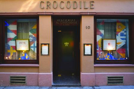 Crocodile_blog