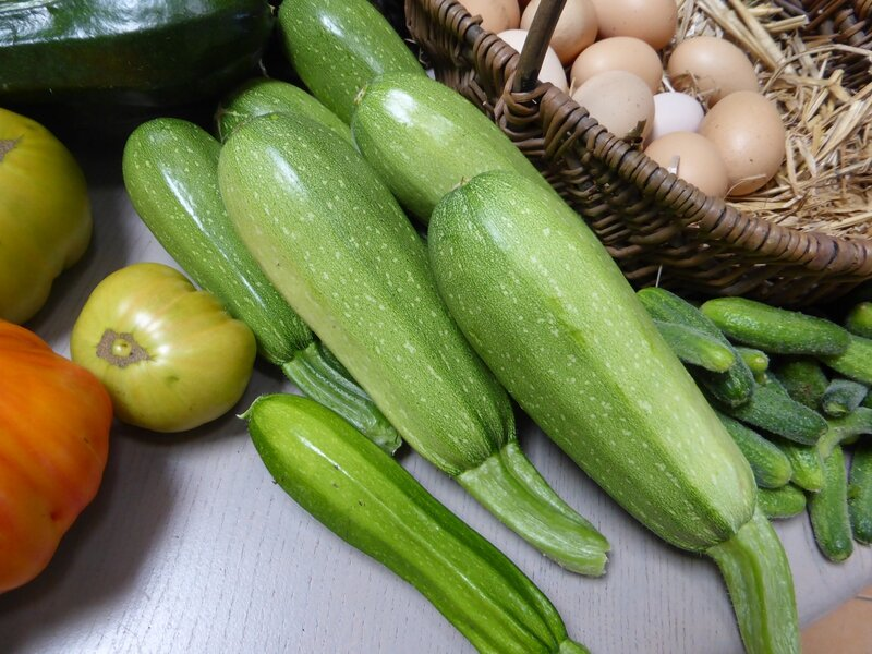 30-courgettes (2)