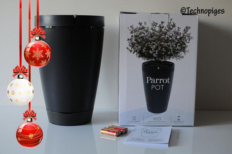 Parrot_Pot_noel