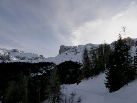 20090116_33