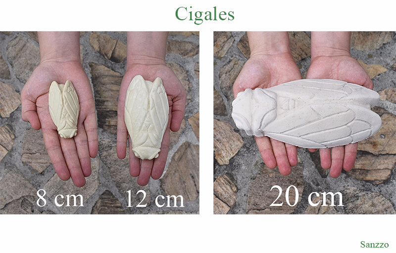 tailles cigales moules silicone