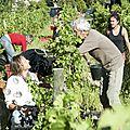 Vendanges 2012 Anne Bouillot (6)