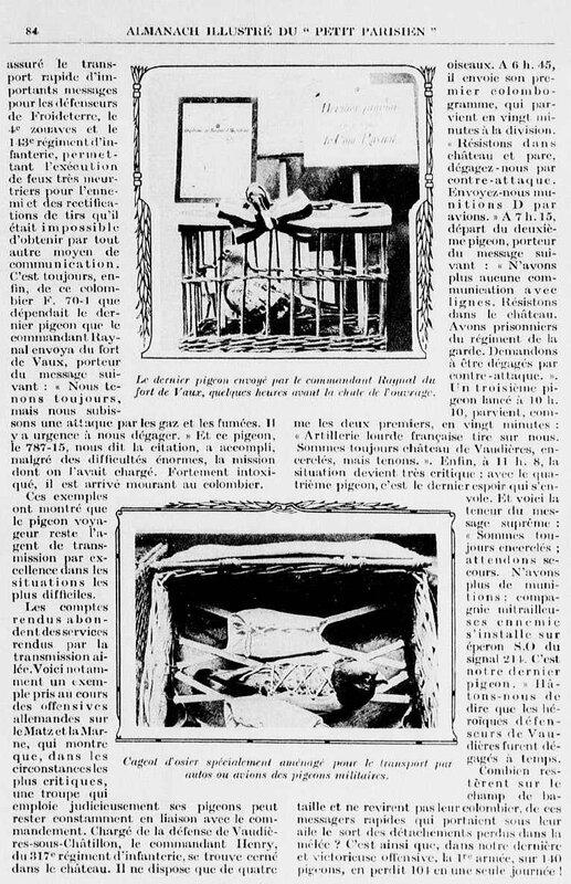 Pigeon1 almanach petit parisien 1921