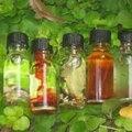 Les parfums magiques du maitre chacha