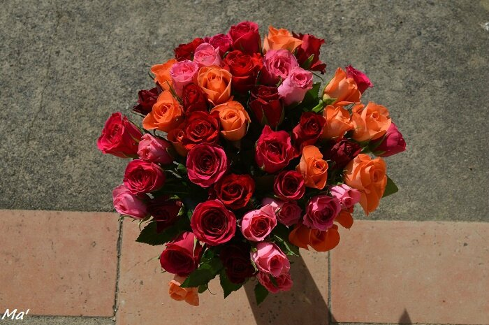 160202_bouquet