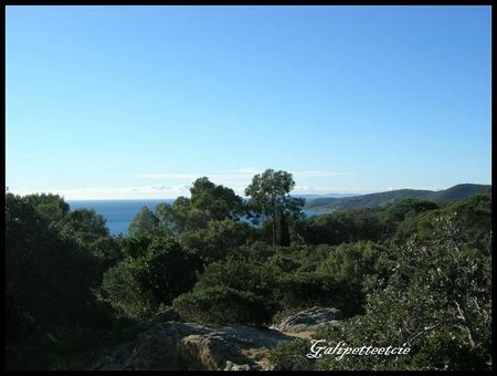 Saint Tropez4