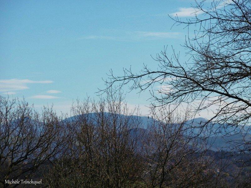 Col d'Ibardin, Urrugne et Sare 240118