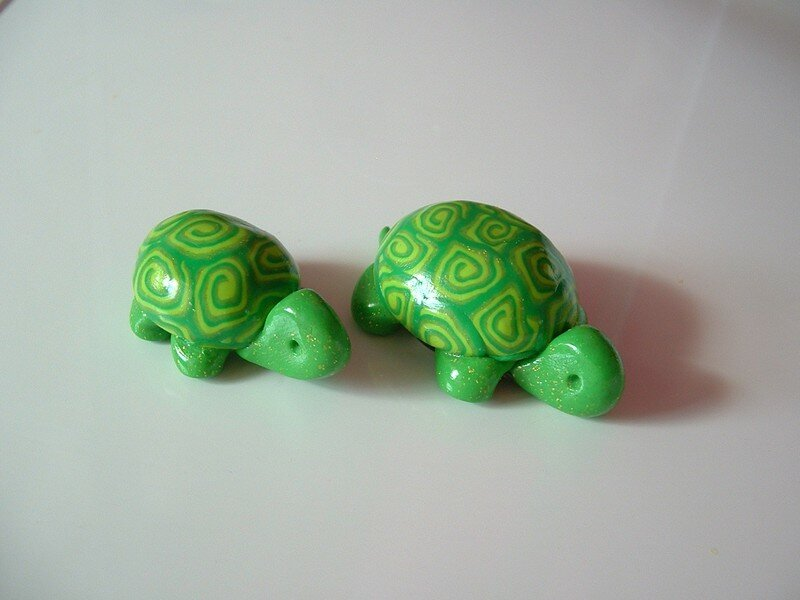 tortues vertes