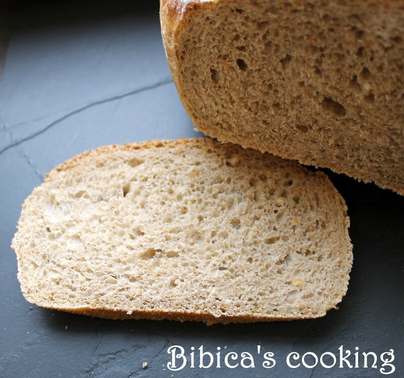 Pain de campagne {au Cook'in} coupe gros plan