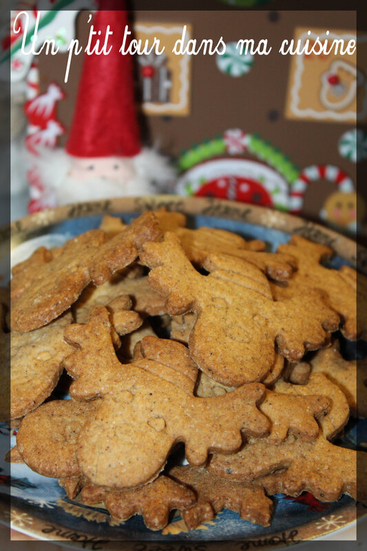 Biscuits speculoos2