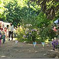 Windows-Live-Writer/jardin-charme_12604/DSCN0544_thumb