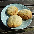 Cookies à la noix de coco et aux pépites de chocolat blanc